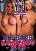 th 155573252 tduid300079 BigBoobBangeroo30 123 533lo Big Boob Bangeroo 30